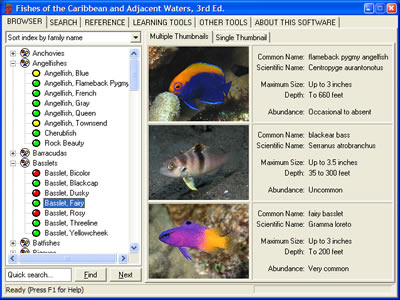 Species Browser